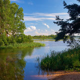 Backwater of the river at the summer evening Royalty Free Stock Photography