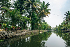 Backwaters in Alappuzha Alleppey. Kerala state, India Royalty Free Stock Image