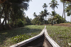 The backwaters kerala Stock Image