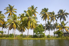 Backwaters of Kerala, India Royalty Free Stock Photos