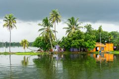 Appelley Kerala, India. Backwaters of Kerala, India - Picture taken while living on a houseboat Royalty Free Stock Photos