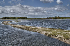 Backwaters at the mouth of the River Warta Stock Images