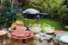 Backyard bar-b-que Royalty Free Stock Image