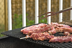 Backyard Barbecue. Delicious barbecue in the backyard stock images