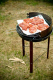 BACKYARD BARBECUE GRILL Stock Images