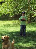 Backyard baseball with the dog. Golden retriever running to catch a baseball while young boy looks on in backyard on spring day Stock Photo