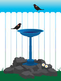 Backyard Bird Bath Royalty Free Stock Images
