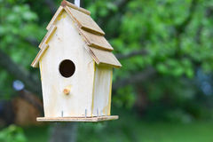 Backyard Birdhouse. Handmade wooden birdhouse hanging from tree in backyard Royalty Free Stock Photo