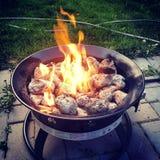 Backyard campfire Stock Photos