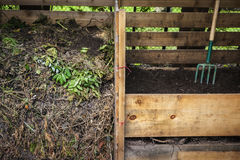 Backyard compost bins. Large cedar wood compost boxes with composted soil and yard waste for backyard composting Stock Image