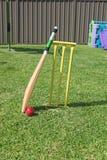 Backyard Cricket Stock Photo