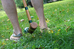Backyard croquet Stock Photography