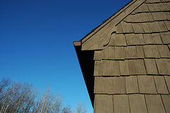 Backyard detail. Detail of home and yard royalty free stock photography