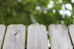 Backyard fence perspective Royalty Free Stock Image