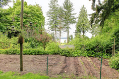 Backyard with fenced garden bed Royalty Free Stock Photos