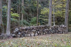 Free Backyard Fire Wood Stack Royalty Free Stock Photos - 164856318