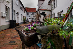 Backyard with flowers in Lubeck Town. Germany Stock Images