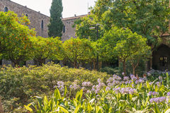 Backyard of the former hospital Santa Creu de Barcelona Royalty Free Stock Photos
