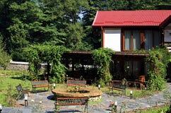 Backyard garden Stock Image