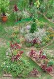 Backyard Garden Stock Images