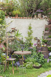 Backyard garden. Beautiful backyard garden. Natural background Stock Photography