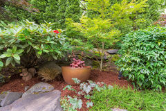 Backyard Garden Landscaping with Gold Pot. Backyard Garden landscaping gold container pot with plants shrubs trees rocks and bark dust Stock Image