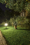 Backyard Garden Path at Night Stock Image