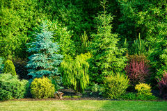 Backyard Garden Royalty Free Stock Photography