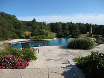 Backyard landscape. Beautiful picture of a backyard pool and landscape overlooking a field and forest Royalty Free Stock Photos