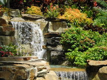 Backyard Landscape. Backyard landscaping including dual water falls, flowers, shrubs, palm trees, florida friendly plants and flowers, ferns, rocks and more Royalty Free Stock Photo
