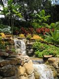 Backyard Landscape. Backyard landscaping including dual water falls, flowers, shrubs, palm trees, florida friendly plants and flowers, ferns, rocks and more Royalty Free Stock Photography