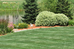 Backyard Landscaping royalty free stock photos