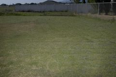 Backyard Lawn Royalty Free Stock Photos