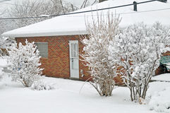 Backyard and new fallen snow. Image of fresh snow in my back yard Royalty Free Stock Image