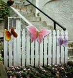 Backyard Stock Image