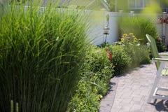 Backyard outdoor patio. Summer garden stock image
