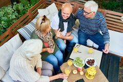 Backyard Party of Senior Friends. High angle view of elderly people spending pleasant time together at backyard party: they chatting animatedly with each other stock photography