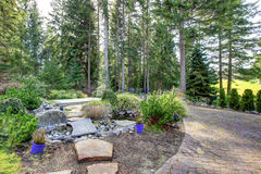 Backyard with pine trees and stone steps to pond. Stock Photo