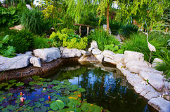 Backyard pond Stock Photography