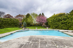 Backyard with pool Stock Photography