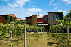 Backyard of Primo Posto. Thailand Asia Stock Photography