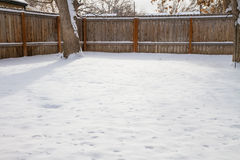 Backyard of snow Royalty Free Stock Image