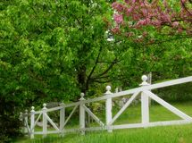 Backyard in Spring Royalty Free Stock Photography
