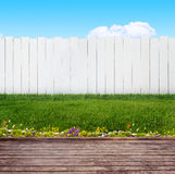 Backyard in summer Royalty Free Stock Photography