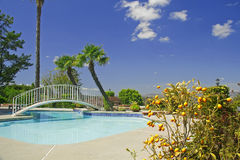 Backyard with swimming pool and little bridge Stock Images
