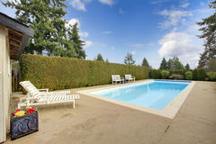 Backyard swimming pool surrounded by hedge trim Stock Image