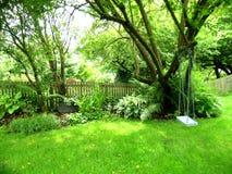 Backyard Swing. Lovely green vegetation framing a child's tree swing stock photography