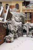Backyard under snow Royalty Free Stock Image