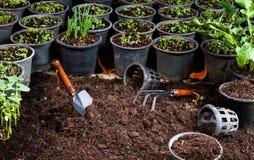 Backyard Vegetable Garden Stock Photos