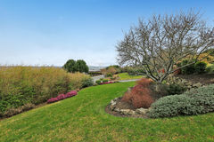 Backyard view. Green lawn and blooming lower beds Stock Image